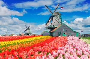 nederland10