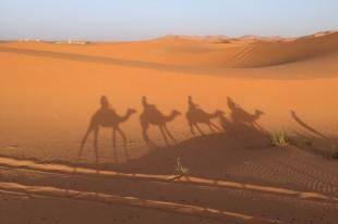 desert-3131312_960_720